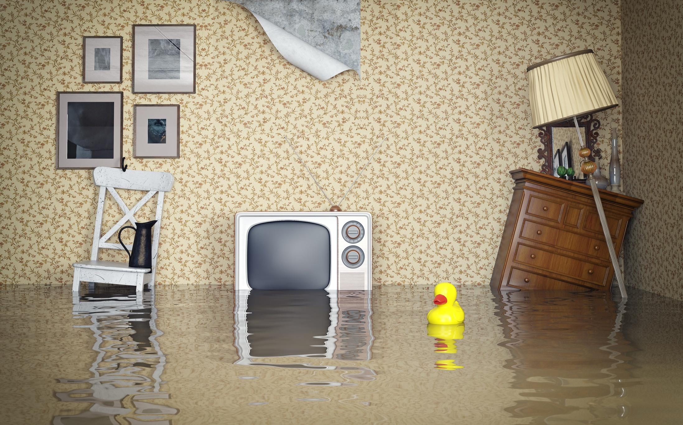 renters_insurance